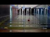 Экспериментальная демонстрация генерации и деструктивного воздействия волны-убийцы в волновом бассейне